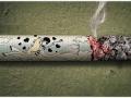 fumo9